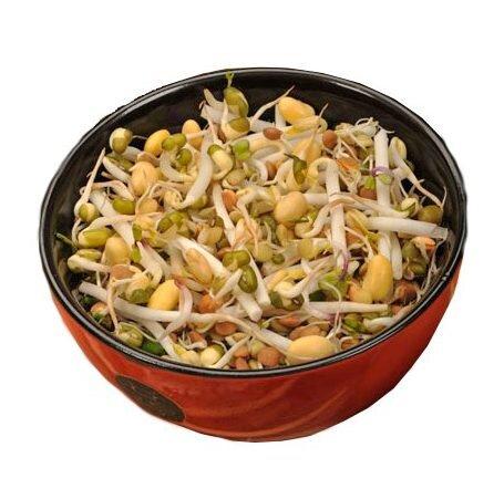 40 g Semená na klíčenie (čínska zmes)
