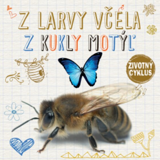 Z larvy včela, z kukly motýľ
