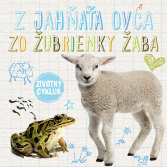 Z jahňaťa ovca, zo žubrienky žaba