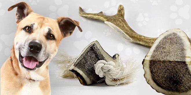 Žuvacie kosti pre vášho psíka