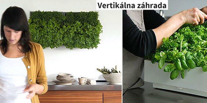 Vertikálna záhrada pre osvieženie vášho domu