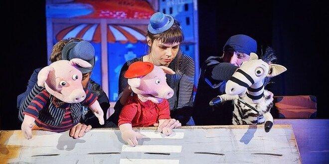 Vstupenka do Bratislavského bábkového divadla