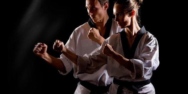 Bojové umenia karate a kobudo: mesačný alebo 3-mesačný tréning