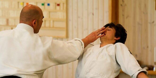 Mesačný tréning Aikido - bojové umenie, ktoré vás naučí nebáť sa