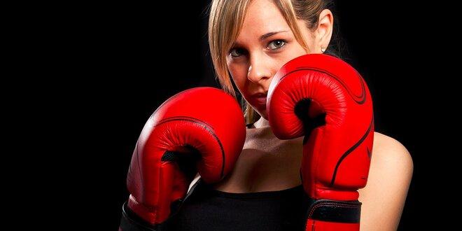 Jednorazový vstup na tréning boxu či mesačná permanentka do fight clubu