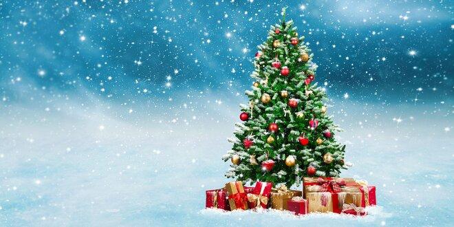 Ozdobený vianočný stromček - pripravený na darčeky!