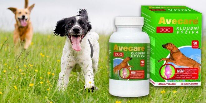 Kĺbová výživa pre psov