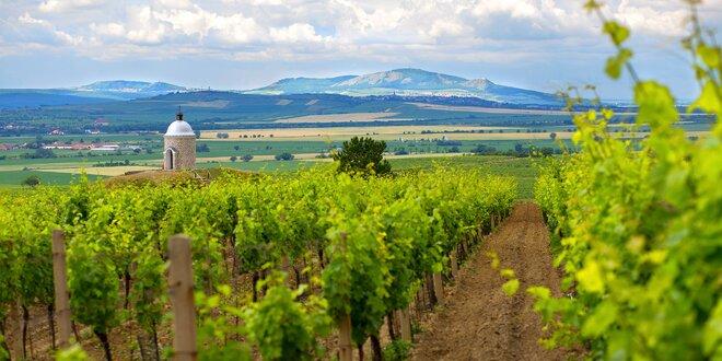 Na južnú Moravu za vínom a wellness: pobyt s polpenziou plný odpočinku