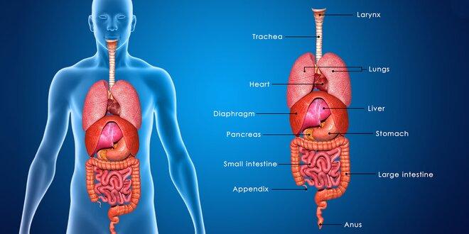 Biorezonancia aj s diagnostikou a terapiou