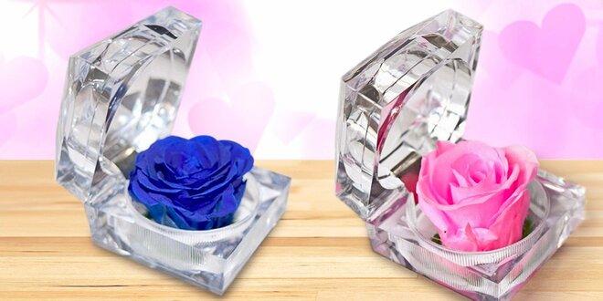 S láskou naveky: nesmrteľná ruža v darčekovej krabičke