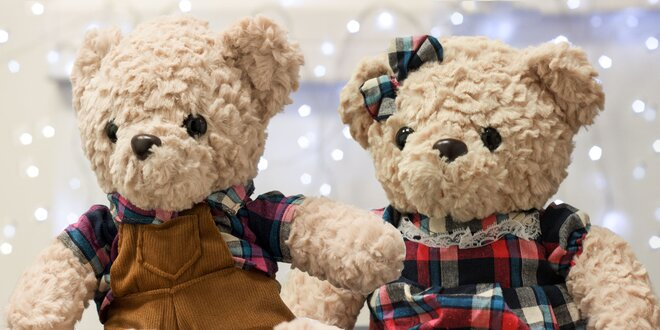 Plyšoví medvedí kamaráti - krásny darček pre deti!