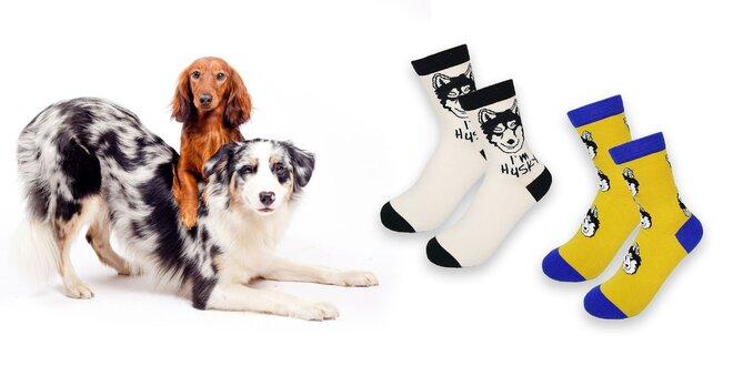 Dámske ponožky so psím motívom