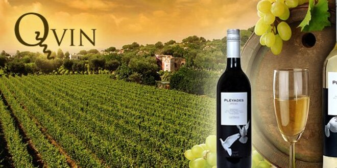 9,50 eur za dve fľaše španielskeho bieleho vína Macabeo a červeného vína Shiraz, ročník 2010