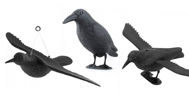 Makety havrana na odpudenie vtáctva