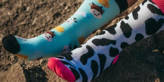 Veselé obrázkové ponožky TIAMMA: 13 druhov