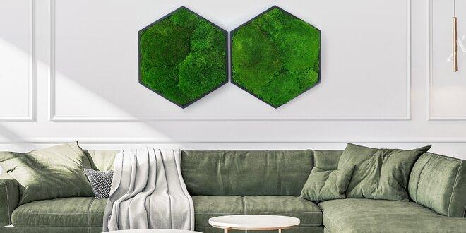 Ručne vyrobené obrazy z rôznych druhov živého machu