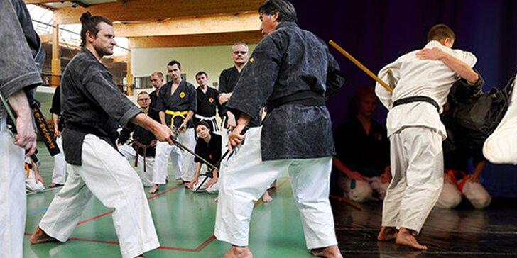 1 alebo 3 mesačný tréning Kobudo či Karate