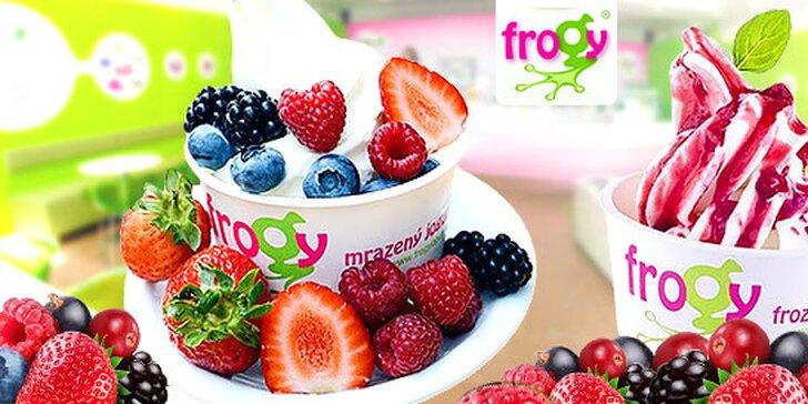 Veľký mrazený jogurt s ovocím, ktorý roztopí ľady