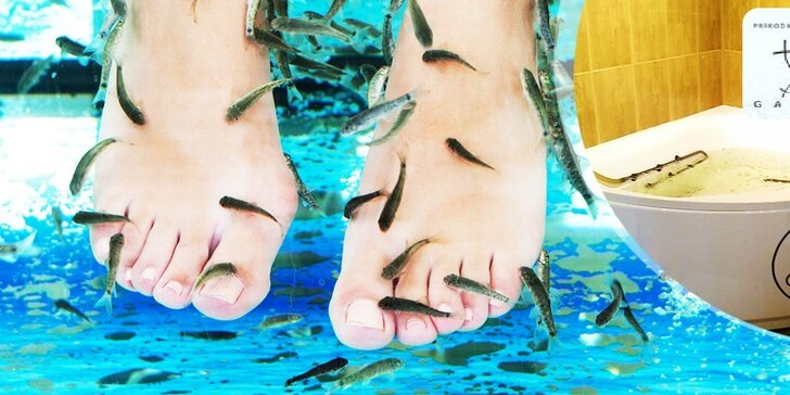Nechajte rybích lekárov vyliečiť vaše nohy ba aj celé telo!