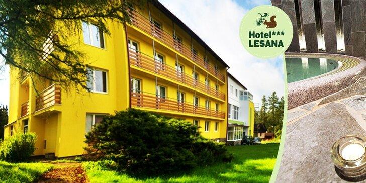 Dovolenka pre 2 osoby vo Vysokých Tatrách v hoteli Lesana*** s novučičkým wellness za vynikajúcu cenu!