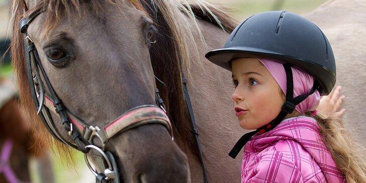 Denný alebo týždenný jazdecký tábor pre deti od 7 do 16 rokov! Leto 2016!