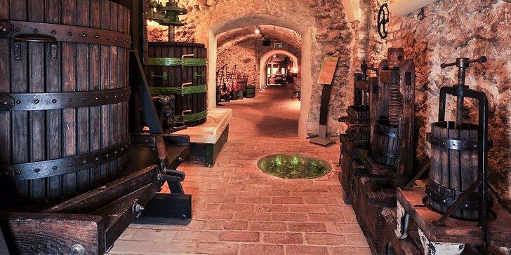 Prehliadka expozícií Príbeh vína a Dejiny vinohradníctva a vinárstva pod Malými Karpatami a všetkých prebiehajúcich výstav v Malokarpatskom múzeu v Pezinku