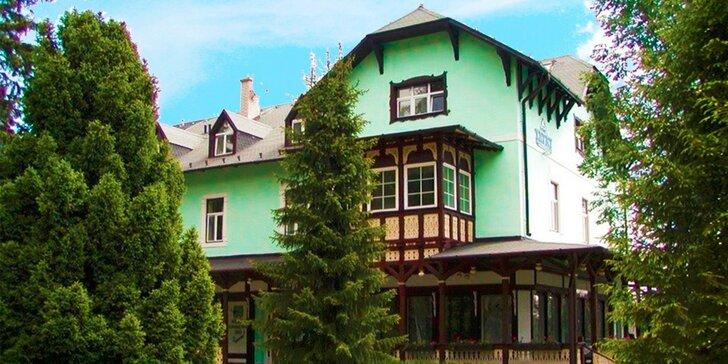 Štýlový historický Hotel Tatry*** v Tatranskej Lomnici + 1 dieťa do 12 rokov zdarma