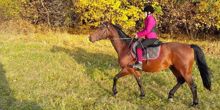 Jazdecké lekcie - vhodné aj pre deti od 3 rokov!