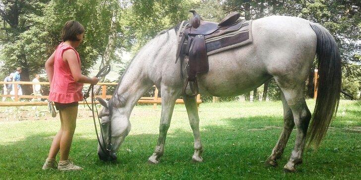 Lekcie jazdenia na koni alebo jazda na vlečke ťahanej traktoríkom