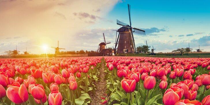 Spoznávajte rozkvitnuté Holandsko za 6 dní plné čarovných miest a zážitkov