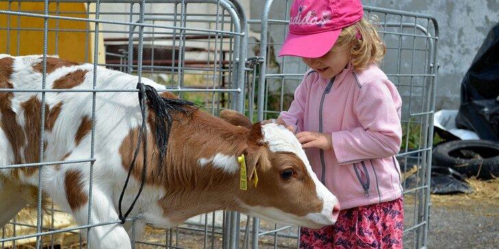Prehliadka Farmy Východná pre celú rodinu i jednotlivca