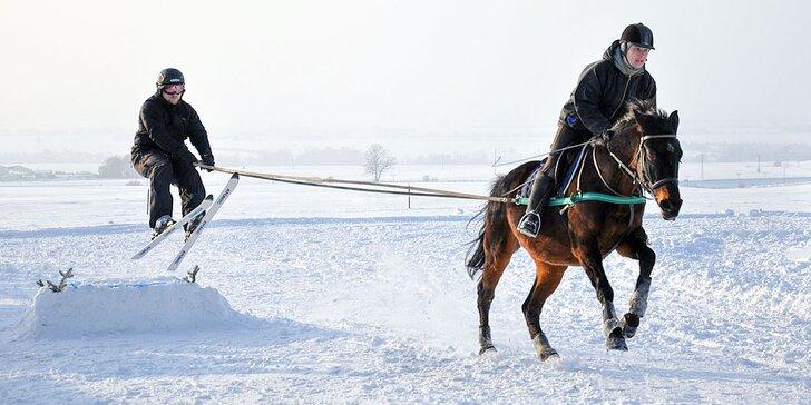 Zážitky z konského sedla! Zimný skijoring, prechádzky či poníky pre deti