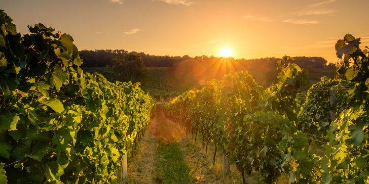 Počas troch víkendov vinárom: práca na vinici aj relax vo wellness pre dvoch