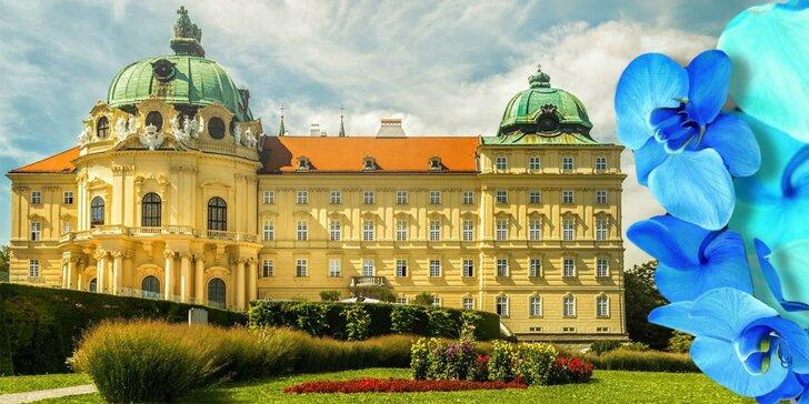 Jedna z najväčších výstav orchideí v Európe a kláštor Klosterneuburg