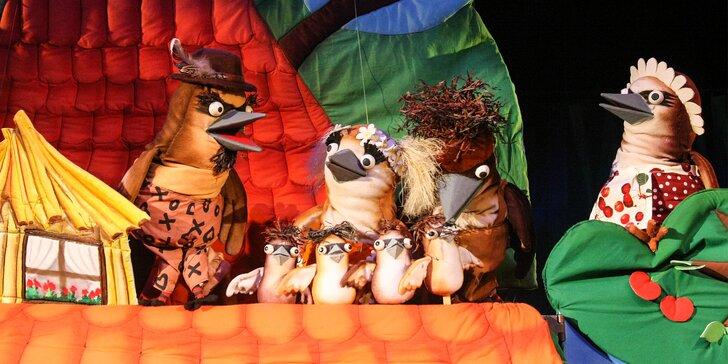 Vstupenka do Bratislavského bábkového divadla alebo permanentka