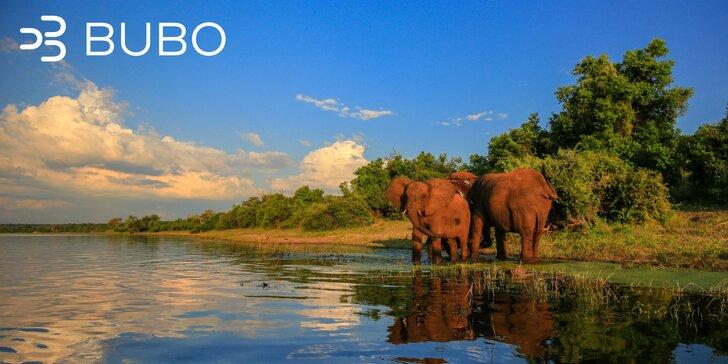 Romantické safari pod južným krížom: Juhoafrická Republika