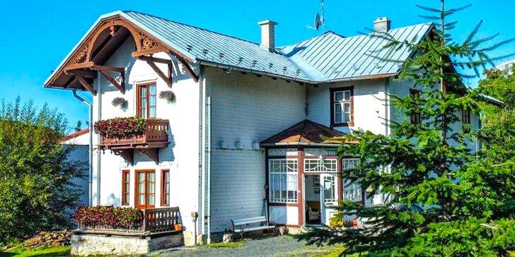 Pobyt v historickej budove v Penzióne Breza na úpätí Slávkovského Štítu