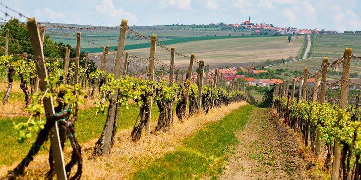 Jar medzi vinicami: relax na Slovácku s polpenziou, wellness a miestnym vínom
