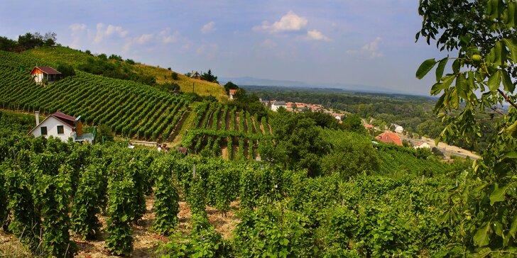 Trojhviezdičkový komfort a relax medzi maďarskými vinohradmi v Tokaji!
