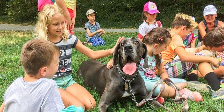 Denný detský tábor Happy Monkey v rakúskom Kittsee
