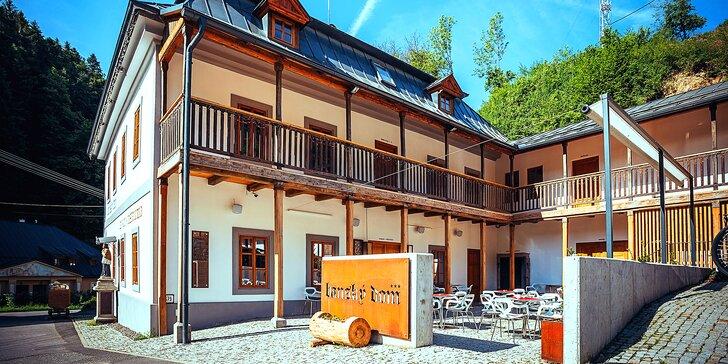 Wellness pobyt v novo zrekonštruovanom, špičkovom penzióne Banský dom*** uprostred krásnych Štiavnických vrchov