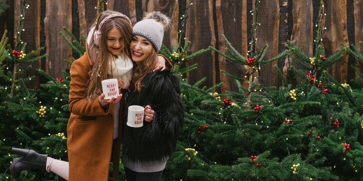 Poďte na vianočné trhy do Brna a na Zámok Slavkov u Brna!
