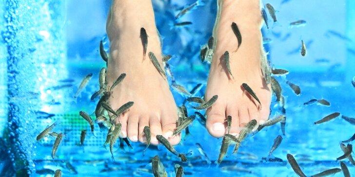 Hladní rybí lekári vyliečia vaše nohy!