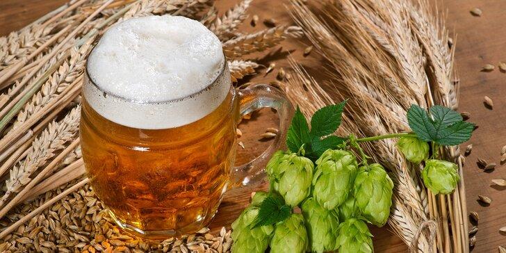 Pivný doktorát v Rožnovskom pivovare vr. obeda a neobmedzenej degustácie