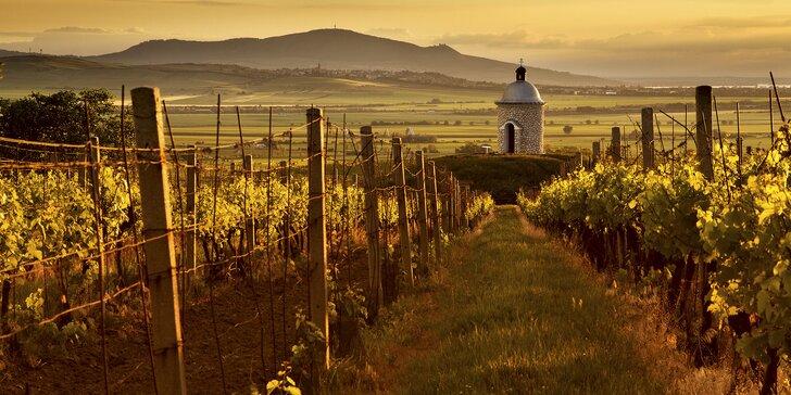 Vinársky pobyt s degustáciou na južnej Morave: platnosť na celú sezónu 2019