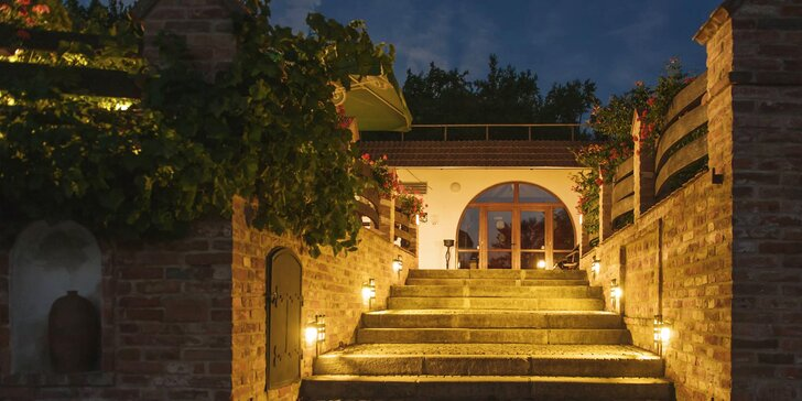 Zážitkový pobyt vo vinárstve pre milovníkov južnej Moravy, jedla a vína