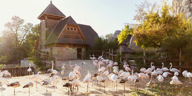 Zájazd do Budapešti pre celú rodinu – zoo a Oceanárium