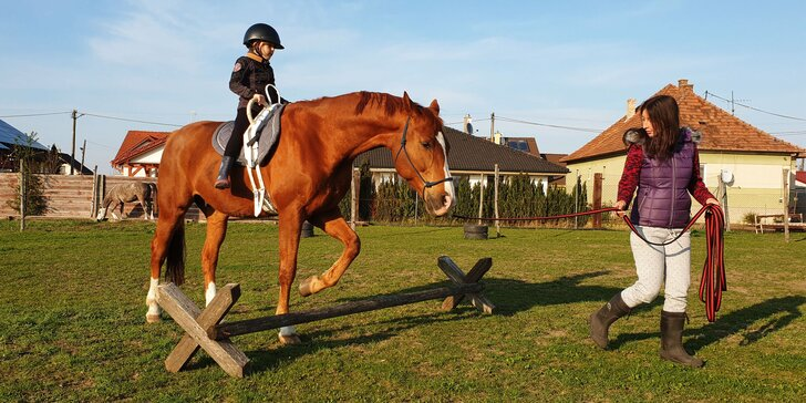 VIP Letný tábor s koňmi pre deti základných škôl