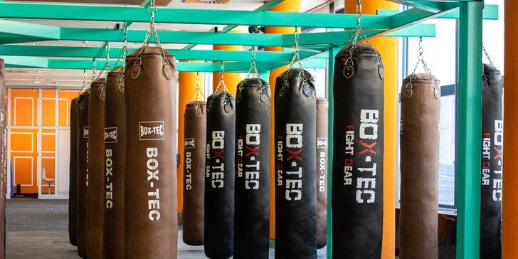 Elite Fitness Boxing