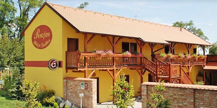 Krásy južnej Moravy: 3-6 dní, raňajky, víno aj zľavy do aquaparku či na bicykle